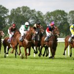 Horse Racing for Beginners – What You Should Know about The Sport