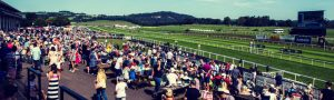 Horse Racing for Beginners - What You Should Know about The Sport