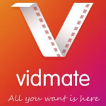 Download the Vidmate app for unlimited entertainment