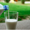 Reasons Why You Should Be Drinking Milk