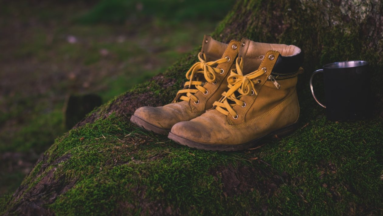 Negative Heel Shoes