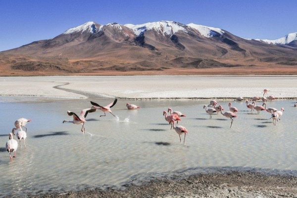 4 Astonishing Facts About Bolivia That You Should Know