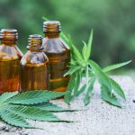 What is CBD oil – Top 7 facts that you should know