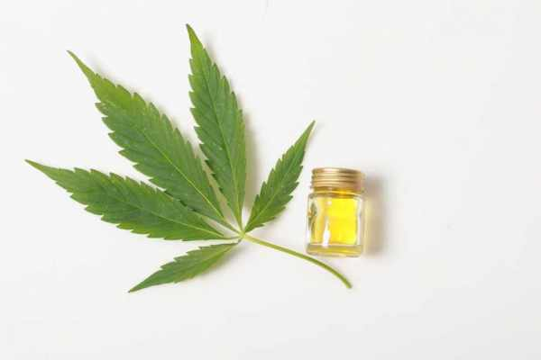 An In-depth Guide on How to Take CBD