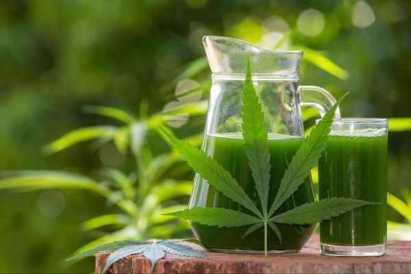 THC Detox Drink