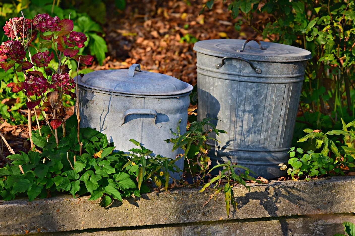 How to Recycle Your Waste at Home